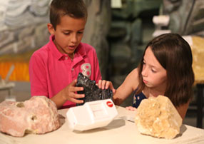 Rocks, Minerals, and Fossils Workshop